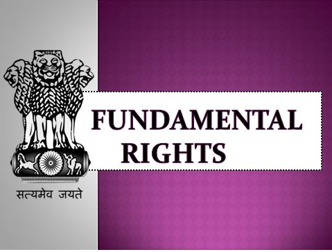 Image result for fundamental rights india