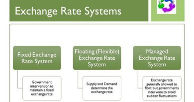 Flexible Exchange Rate System: Regime For Valuation Of Money
