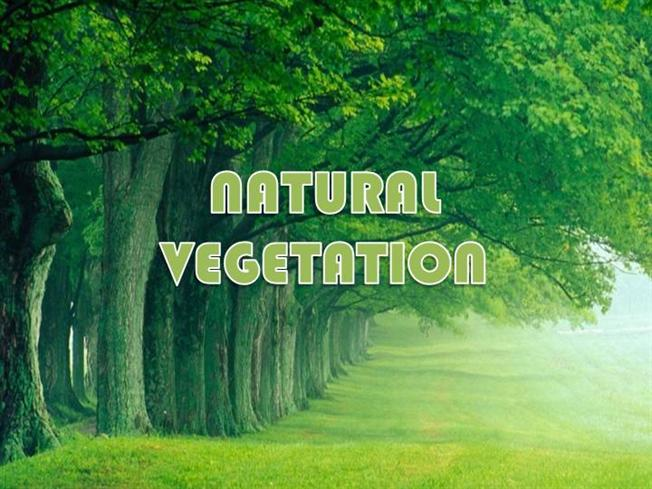natural vegetation in major natural vegetation in  natural vegetation in