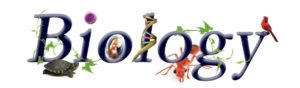 NCERT Solutions For Class 11 Biology