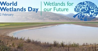 World Wetlands Day