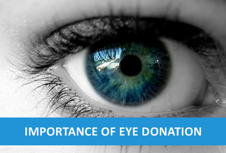 essay on eye donation is the best donation Structure on eye donation in english 71importance of eye understanding speech 31 eye eye donation essay in telugu is the best government essay 30.