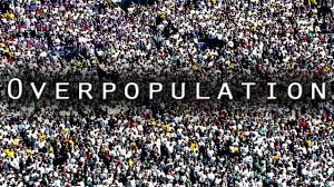 overpopulation essay for students and kids prevention and cure