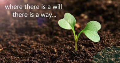 Where there is a will there is a way