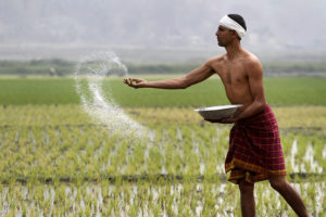 essay on indian farmer for class 9