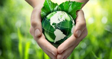 Environment Day Essay