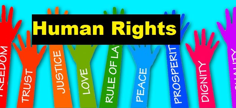 Essay on Human Rights