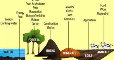 Natural resources essay