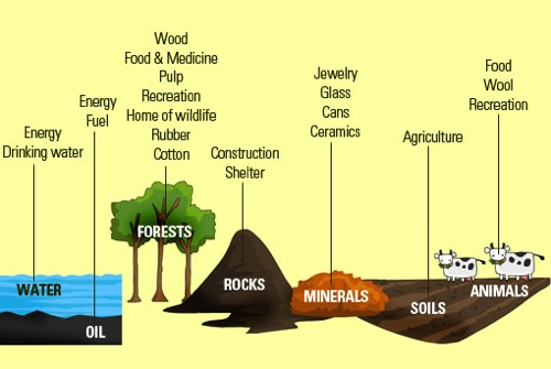 Conservation Of Natural Resources Importance
