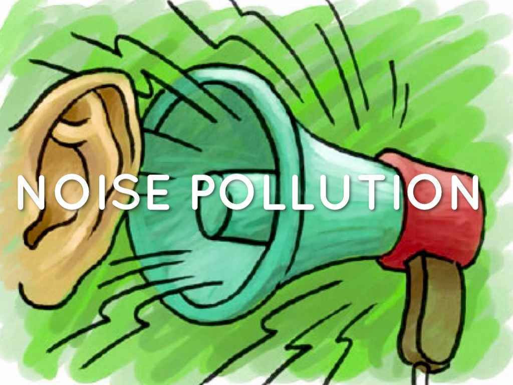 causes amp effects of noise pollution in points
