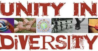 Essay on Unity in Diversity