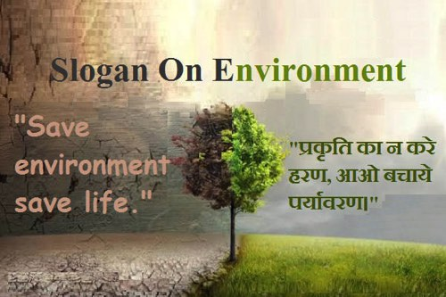 Essay on save our environment for kids