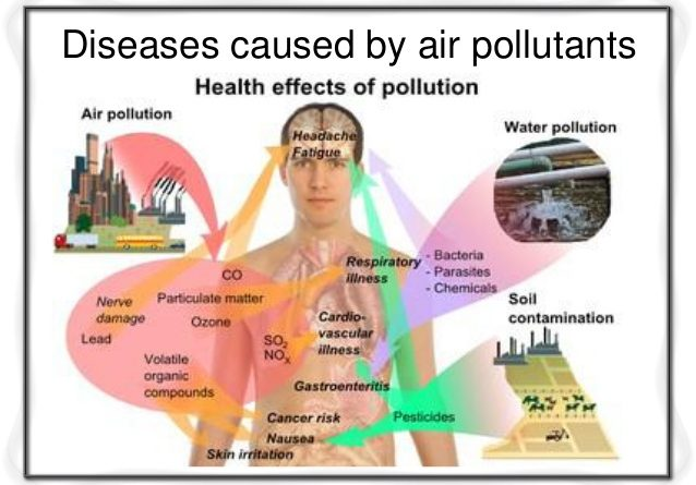 top 11 health concerns essay Top 147 successful college essays my eleven year old eyes struggle to abstract the health effects of air pollution have been subject to intense study in.