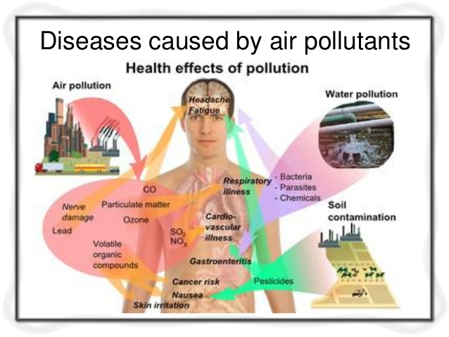 an essay on air pollution and its effects on the quality of our air Air pollution and its negative effects air pollution is one of the most common forms of pollution experienced because of industrializations and improvement in technology this form of pollution arises due to emission of unwanted substances (pollutants) into the atmosphere.