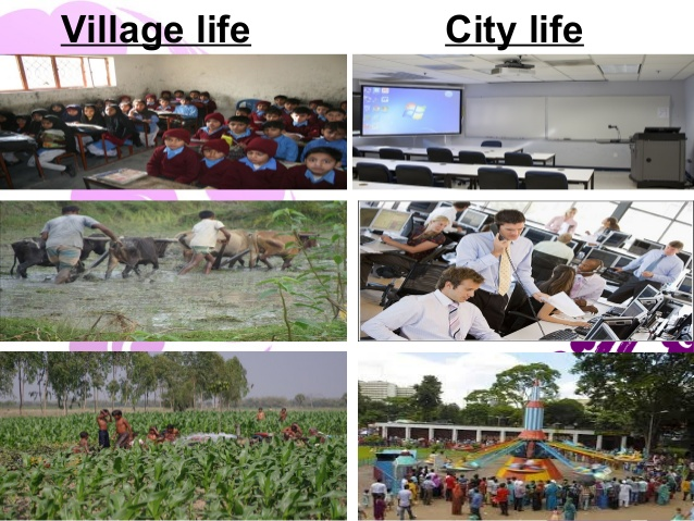 essay on village life city life for students children