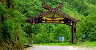 Nagaland NEET Counselling