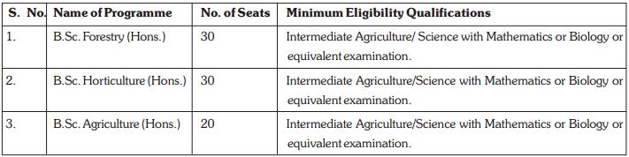 For Undergraduate ProgrammesFor Undergraduate Programmes