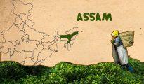NMMS Assam 2019