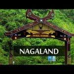 NTSE Nagaland 2019