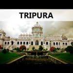 NTSE Tripura 2019