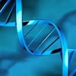 M.B.A. Bioinformatics